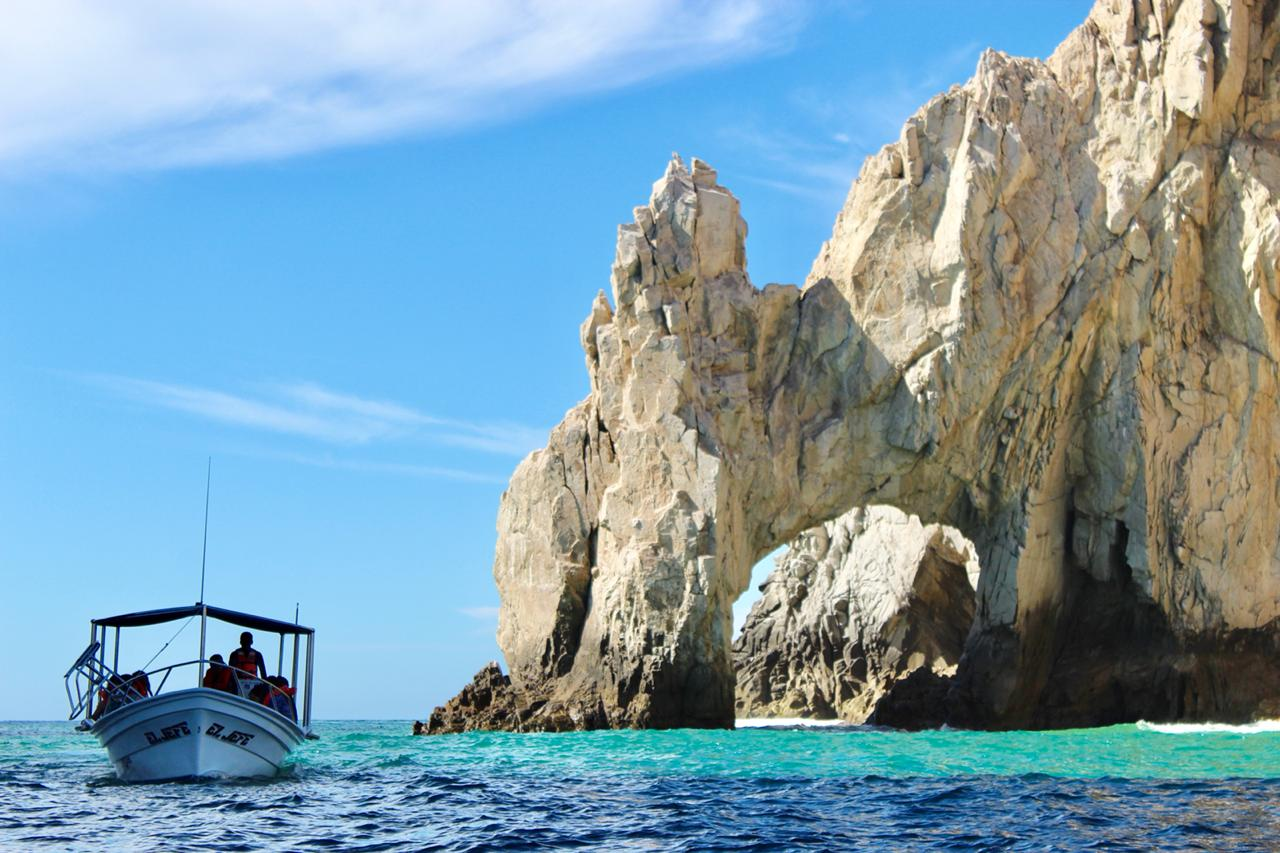 shared whale watching in cabo san lucas services