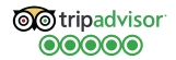 cabo shuttle services five stars on tripadvisor