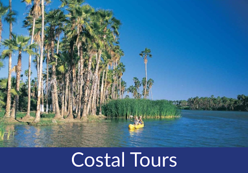 COSTAL TOURS